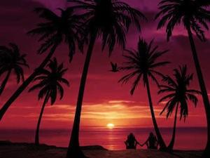 Coucher de Soleil sur une Plage Tropicale