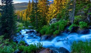 Le Chant du Ruisseau